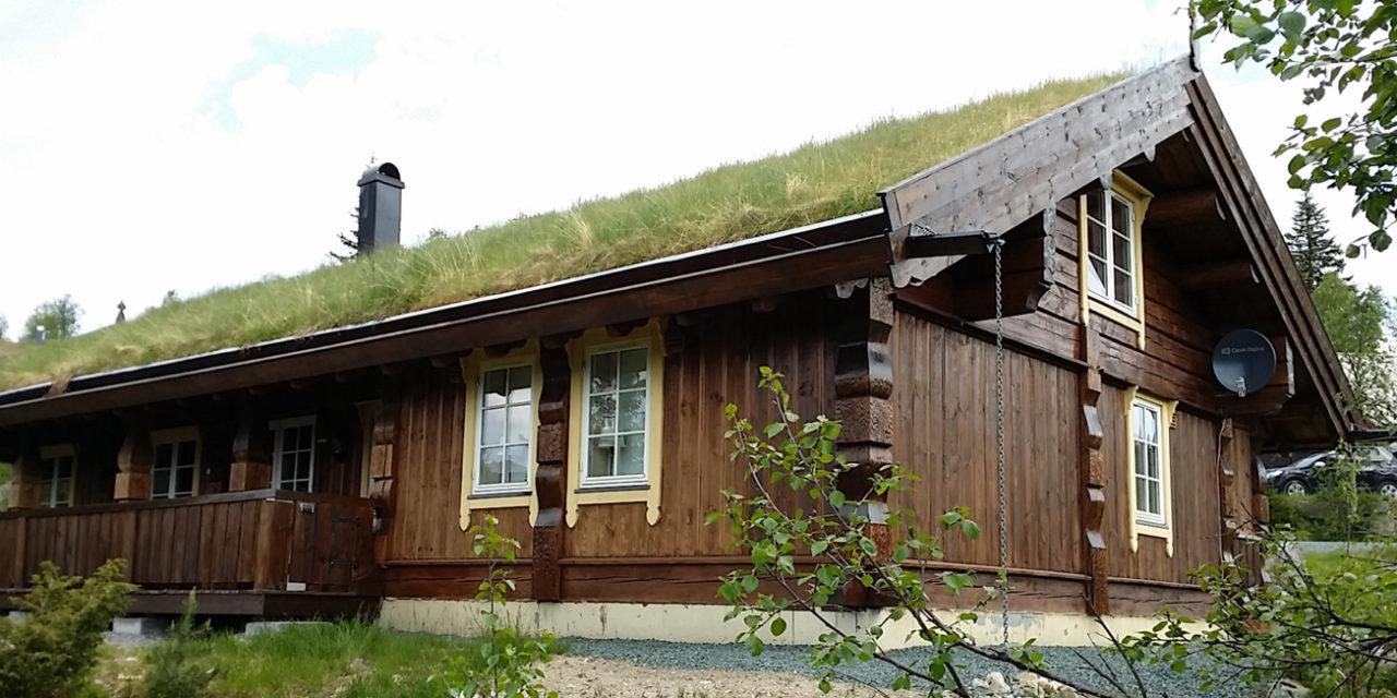 Rąstinio namo kaina, statybinė medžiaga